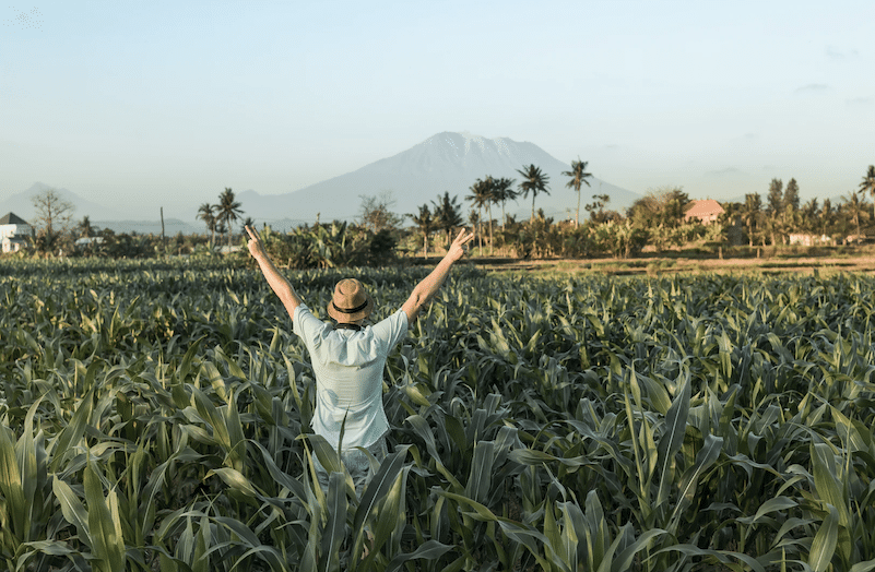 5 Essential Tips When Starting An Agribusiness