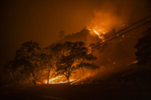 Gridware is building early-detection sensors for power grid failures and wildfires – TechCrunch