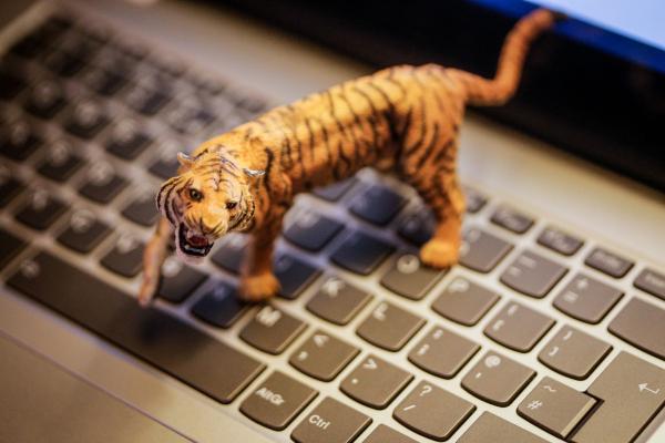 TigerGraph raises $105M Series C for its enterprise graph database – TechCrunch