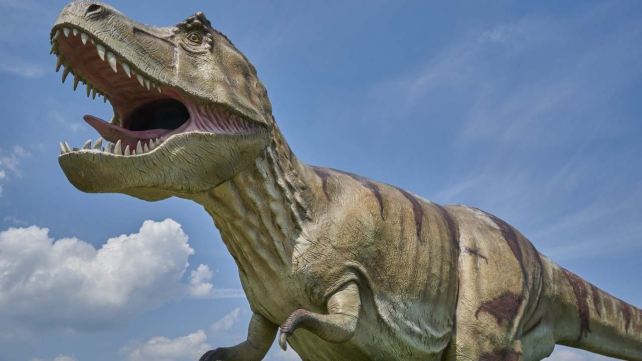 Teen angst? T-Rex, other large dinosaurs out-competed smaller rival species, study finds- Technology News, FP