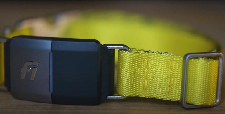 Connected pet collar company Fi raises a $30M Series B – TechCrunch