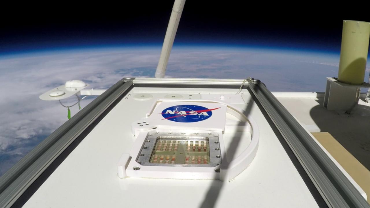 Terrestrial microbes could survive briefly on Mars, be a food source for astronauts: Study- Technology News, FP