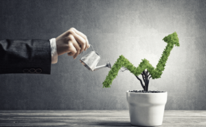 Money Moves: How to Expand a Business Fast