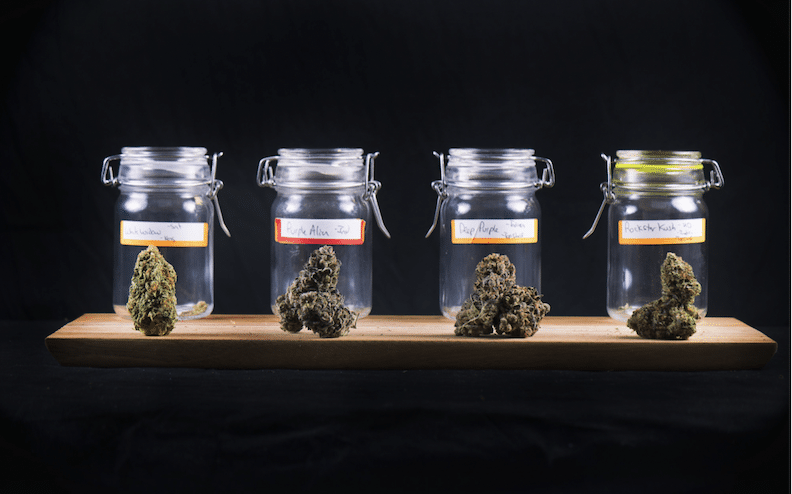 How to Start a Successful Cannabis Store