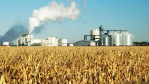 """Third of world's farm are at """"high risk"""" of pesticide pollution: Study- Technology News, FP"""