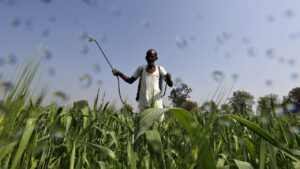 UN warns of growing threats to food systems, livelihoods in agriculture- Technology News, FP