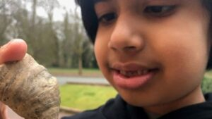 Six-year-old stumbles on coral fossil from million of years ago in England garden- Technology News, FP