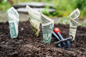 Saving Solutions: 4 Ways to Cut Business Overhead