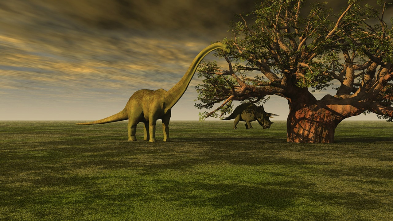 Remains of massive plant-eating lizard likely the largest sauropod fossil ever found- Technology News, FP
