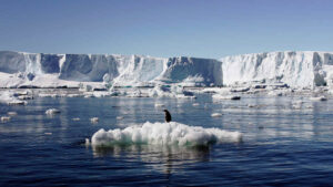 Third of Antarctic ice shelf at risk of collapsing due to global warming- Technology News, FP