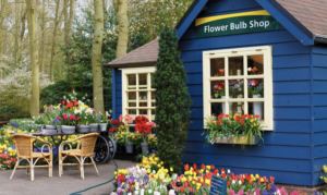 Petal to the Metal: Everything You Need to Open a Flower Shop