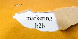 how B2B content marketing is emerging as a game-changer for startups
