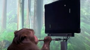 Elon Musk-backed Neuralink startup releases clip of a monkey playing video game called Pong with its brain- Technology News, FP