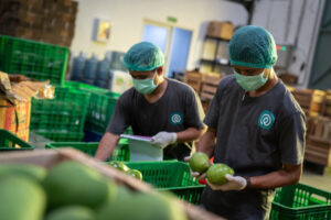Indonesian agritech platform TaniHub Group harvests a $65.5M Series B round – TechCrunch