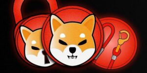 All about the Shiba Inu coin and how to buy it in India