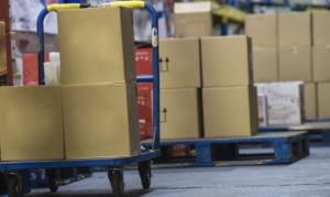 The Brief Guide That Makes It Simple to Setup an eCommerce Warehouse