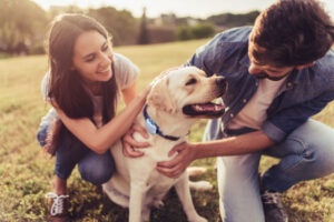 Tractive raises $35M as it expands GPS pet tracking to the US – TechCrunch