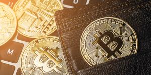 Govt should allow cryptocurrencies, says former Finance Secretary S C Garg