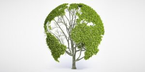 Conversations about conservation – 40 quotes and proverbs on World Environment Day