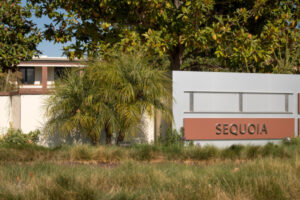 Sequoia unveils fifth group of startups for Surge – TC