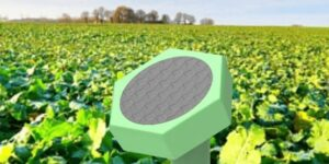 How Cisco LaunchPad portfolio startup Sensegrass is creating 360-degree smart farming solutions