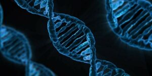 [Funding alert] India Accelerator and Lyxel&Flamingo invest in genomic health and wellness startup Answer Genomics