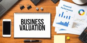 Understanding the intricacies of business valuation for non-public companies