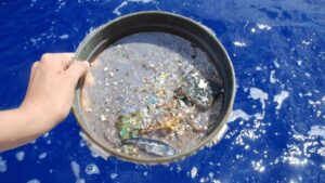 Scientists use NASA's CYGNSS satellite data to track microplastics in the ocean- Technology News, FP