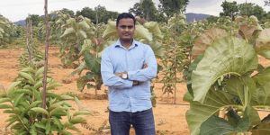 How this agro realty company enables investments in farmlands that are sustainable and financially viable