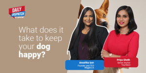 Pet care startup Wiggles in talks to raise $3M as it gets on growth track