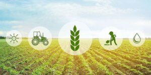 The future lies in building a safer food system using agritech