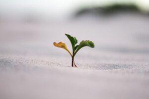 This week in growth marketing on TechCrunch – TechCrunch