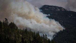 Can the same mask used against COVID-19, keep me safe from the wildfire smoke?- Technology News, FP
