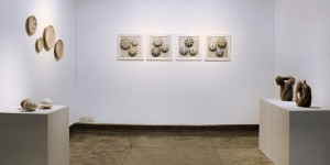 Explore, express, enrich – creativity insights from the Gallery Espace exhibitions