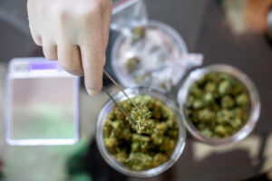Cannabis e-commerce startup Jane Technologies raises $100M after stellar growth – TechCrunch